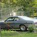 A szervező 1974-es Dodge Dartja. Ilyen volt Al Bundynak, igaz, nem ilyen színben és felszereltségben