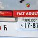 Felnőtt Fiat