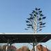 A napelemekből az egyhéjú tetőre is jutott
