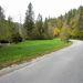 Őszi szlovén kacskaringók és fák