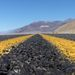 Országút a Halál-völgyben
