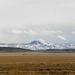 Sztyeppe és havas hegy