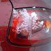 Kis kopoltyú a hátsó lámpaburán