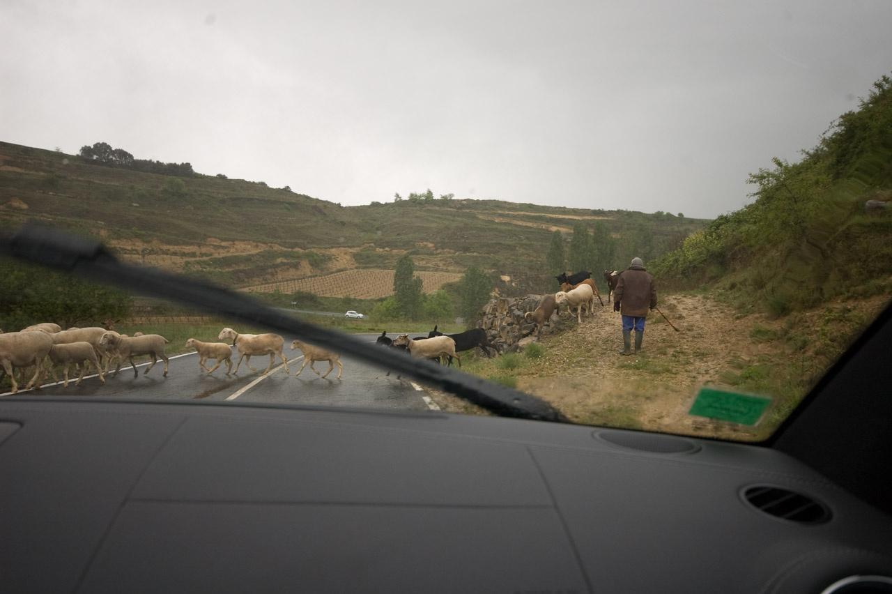 A 19-es kerék és a peres gumi nem a magyar utakra való