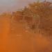 Rafinált berendezések állapítják meg, hogy szennyezett-e a terület