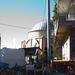 Mecset a házak között, sok van belőlük