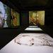 Ez már a virtuális van Gogh-prezentáció, az összes létező falfelületen. A ránk néző öregember maximum 37 éves lehetett, mivel ilyen idősen lett öngyilkos