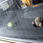 A kalaptartó a nehezebben beszerezhető Taunus-alkatrészek közé tartozik